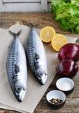 Pesce fresco dello sgombro con un limone, un arco, un sale e un pepe su una tavola di legno Fotografie Stock