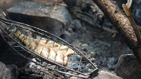 Pesce fresco di un barbecue sui carboni di un fuoco stock footage