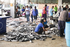 Pesce fresco di vendita Fotografie Stock