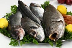 Pesce fresco e verdura sul piatto Immagine Stock Libera da Diritti