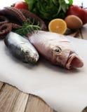 Pesce fresco e verdure Fotografia Stock Libera da Diritti