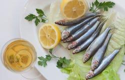 Pesce fresco e vino su un piatto Fotografie Stock Libere da Diritti