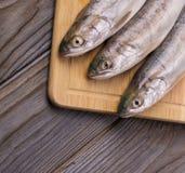 Pesce fresco sul bordo Su una priorità bassa di legno immagini stock
