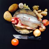 Pesce fresco sullo spezzettamento ed alimento orgnaic su fondo nero Fotografia Stock