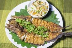 Pesce fritto nel grasso bollente con l'insalata piccante del mango Fotografie Stock