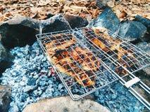 pesce fritto sui carboni Fotografie Stock