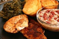 Pesce gatto e pollo di Cajun Immagine Stock