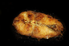 Pesce gatto fritto Fotografia Stock