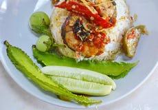 Pesce gatto fritto scalpore piccanti su riso Fotografia Stock Libera da Diritti