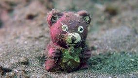 Pesce giovanile di Teddybear Fotografie Stock Libere da Diritti