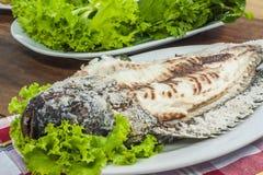 Pesce grigliato Crusted sale Immagine Stock