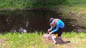 Pesce incinto del fermo della ragazza con la trappola del canestro ed animale domestico del gatto dell'alimentazione video d archivio