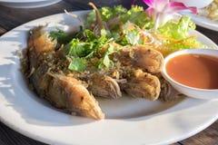 Pesce infornato con aglio e la verdura fresca Immagine Stock Libera da Diritti