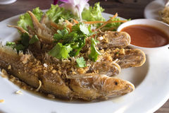 Pesce infornato con aglio e la verdura fresca Fotografia Stock Libera da Diritti