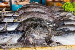 Pesce nel mercato asiatico Immagini Stock Libere da Diritti