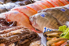 Pesce nel mercato asiatico Immagini Stock