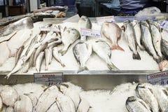 Pesce nel mercato ittico Immagine Stock