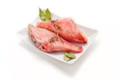 Pesce persico Immagini Stock Libere da Diritti