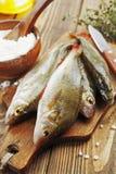 Pesce persico, pesce Fotografia Stock Libera da Diritti