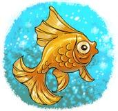 Pesce rosso in acqua di ribollimento Immagini Stock
