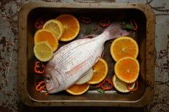 Pesce rosso del pagrus pronto ad essere cucinato nel forno Fotografia Stock
