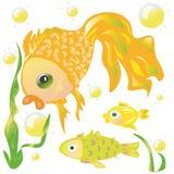 Pesce rosso ed i suoi amici Fotografia Stock Libera da Diritti