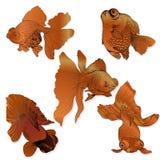 Pesce rosso - insieme dei disegni di vettore Usi i materiali stampati, i segni, i manifesti, cartoline, imballanti Fotografia Stock Libera da Diritti