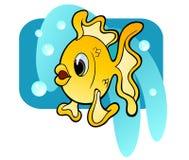 Pesce rosso sciocco Fotografie Stock