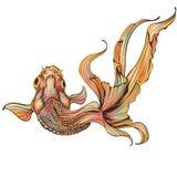 Pesce rosso su fondo bianco Fotografia Stock Libera da Diritti