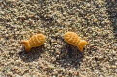 Pesce in sabbia Fotografia Stock Libera da Diritti
