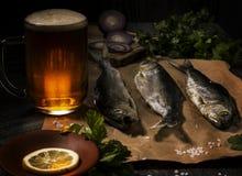 Pesce salato e una tazza di birra in uno stile rustico tradizionale di pesca Fotografie Stock Libere da Diritti