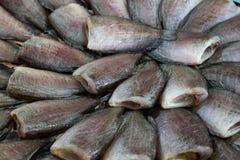 Pesce salato secco della donzella fotografie stock libere da diritti