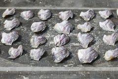 Pesce salato sole Fotografia Stock