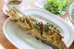 Pesce serpente fritto Fotografie Stock