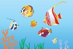 pesce sotto il sae illustrazione di stock
