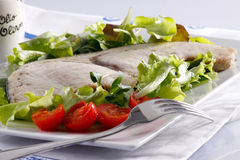 Pesce spada - Swordfish. Grilled swordfish with tomatoes and salad Stock Photos