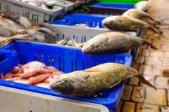 Pesce sulla vendita nel mercato Fotografia Stock Libera da Diritti