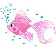 Pesce sveglio Fotografia Stock