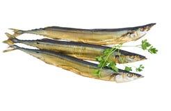 Pesce tre su un fondo bianco Fotografia Stock Libera da Diritti