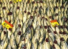 Pesce in un mercato Fotografie Stock Libere da Diritti
