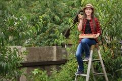 Pesche di raccolto della donna Immagini Stock Libere da Diritti