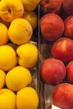 Pesche gialle e rosse Fotografia Stock