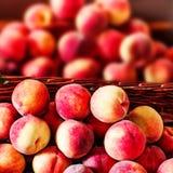 Pesche mature fresche organiche un mercato locale dell'agricoltore Nettarine o Immagine Stock Libera da Diritti