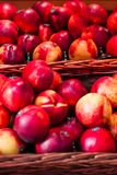 Pesche mature fresche organiche un mercato locale dell'agricoltore Nettarine o Immagini Stock