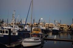 Pescherecci al porticciolo di Lincoln del porto, Australia Meridionale Fotografie Stock