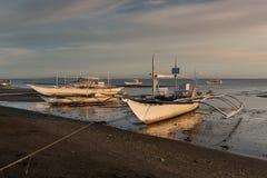 Pescherecci al tramonto - Donsol Filippine Fotografia Stock Libera da Diritti