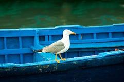 Pescherecci blu su un oceano fotografie stock libere da diritti