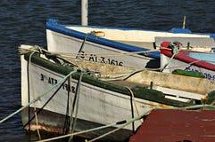 Pescherecci di legno Colourful sul fiume di Segura a Guardamar, Alicante - Spagna fotografia stock libera da diritti