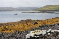Pescherecci e Skerry della guarnizione, lago Pooltiel, Skye Fotografia Stock Libera da Diritti
