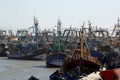 Pescherecci Essaouira Fotografia Stock